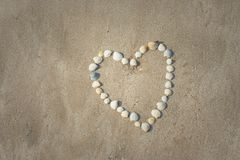 Piękny biały kierowy kształt zrobi od różnorodnej skorupy która ja ustawiający na piasek plaży Obrazy Stock