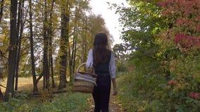 Piękny brunetki dziewczyny odprowadzenie przez jesieni drewien trzyma pyknicznego kosz słoneczny dzień 4K steadicam wideo zdjęcie wideo
