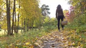 Piękny brunetki dziewczyny odprowadzenie w jesień lesie trzyma pyknicznego kosz 4K steadicam wideo zdjęcie wideo