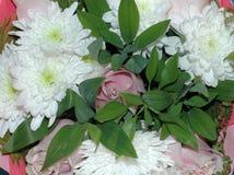 Piękny bukiet kwiaty od róż i chryzantem M Zdjęcia Stock