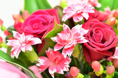 Piękny bukiet róże i goździki. Obrazy Royalty Free