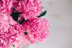 Piękny bukiet różowe peonie banner tła kwiaty form różowego spiralę trochę Obrazy Royalty Free