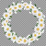 Piękny chamomile wianek na beżowym tle z miejscem dla twój teksta Fotografia Royalty Free