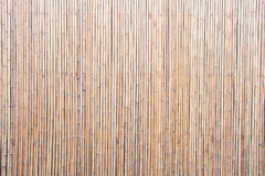 Piękny chiński bambusowy tło Zdjęcia Stock