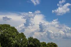 Piękny cloudscape z bujny zieleni deciduous drzewami wzdłuż dna i lewej strony dobrych dla - tła lub kopii zdjęcia royalty free