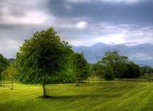 piękny co kerry park narodowy widok obrazy stock