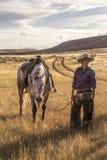 Piękny Cowgirl z koniem obraz stock