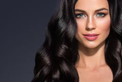 Piękny czarni włosy kobiety piękna portret Zadziwiający fryzury fe obraz royalty free