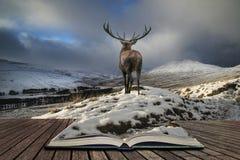 Piękny czerwonego rogacza jeleń w śniegu zakrywał pasmo górskie świąteczny s zdjęcie royalty free