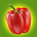 Piękny czerwony pieprz Obraz Stock