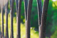 Piękny dokonanego żelaza ogrodzenie obraz royalty free
