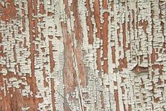 Piękny drewniany tło Rocznika tło z szczelinami na drzewie Tło dla twój projekta, wzory, wzory zdjęcie stock