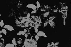 Piękny drzewny ptak i kwiat sztuki obrazów kolorowe różowe purpury zieleniejemy pomarańczowego tło, deseniową tapetę białych i cz royalty ilustracja
