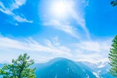 Piękny drzewo i śnieg zakrywać góry kształtujemy teren Kaszmir stat Fotografia Royalty Free