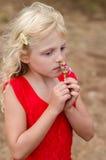 Piękny dziecko wącha kwiatu Obraz Stock
