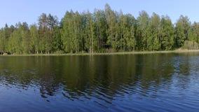 Piękny Fiński jezioro z zielonym lasowym tłem zbiory wideo