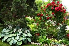 Piękny formalnego ogródu zakończenie w górę fotografii Obraz Stock