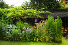Piękny formalnego ogródu zakończenie w górę fotografii Zdjęcia Royalty Free