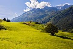 Piękny góra krajobraz w Alps fotografia stock