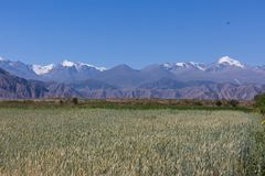 Piękny góra krajobraz w Karakolu, Kirgistan zdjęcie stock
