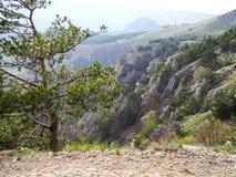 Piękny góra krajobraz z niebezpiecznym z pochylaniem kołysa w wiośnie Zieleni drzewa na skałach Pasma górskie w błękitnej mgiełce fotografia stock