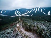 Piękny góra krajobraz z sosnowym lasem i widok na Bukovel zdjęcia stock