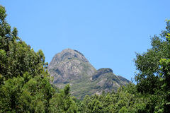 Piękny gładzi skałę w dżungli, Brazylia Zdjęcie Stock