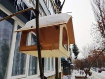 Piękny gniazdujący pudełkowatego lub ptasiego dozownika dla zimy w śniegu obraz royalty free