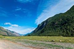 Piękny halny Altai krajobraz na lato słonecznym dniu, Rosja fotografia stock
