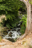 Piękny i Różnorodny Sedona Arizona Fotografia Royalty Free
