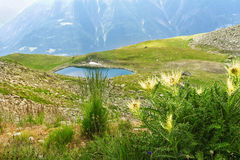Piękny idylliczny Alps krajobraz z jeziorem i górami w lecie obraz royalty free
