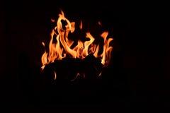 Piękny istny ogień obraz royalty free