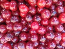 Piękny, jagodowy, czereśniowy, zbliżenie, kolor, deser, dieta, je, jeść szklany, kwiecisty, karmowy, świeży, owocowy, zielenieje, Obrazy Stock