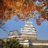 Piękny japończyk Himeji Grodowy i klonowy drzewo Zdjęcia Royalty Free