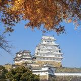 Piękny japończyk Himeji Grodowy i klonowy drzewo Obrazy Stock