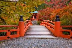 Piękny japończyka ogród z kolorowymi klonowymi drzewami w jesieni fotografia royalty free