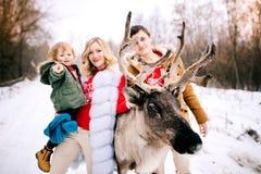 Piękny jeleni patrzejący kamerę, frontowy plan szczęśliwa rodzina z małym dzieckiem w rękach na tylnym tle, defocused obrazy stock