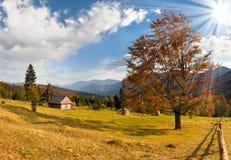 piękny jesień krajobraz Zdjęcie Stock