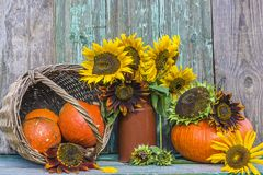 Piękny jesień skład z baniami i słonecznikami zdjęcie royalty free