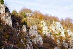 Piękny jesieni góry krajobraz z kolorowym lasem i łąkami w Carpathians zdjęcie stock