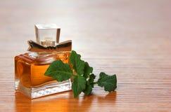 Piękny jest kwadratowy z kobiety pachnidła butelką Zdjęcie Royalty Free