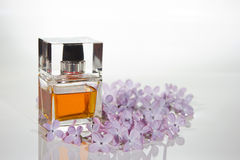 Piękny jest kwadratowy z kobiety pachnidła butelką Zdjęcie Stock