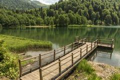 Piękny jezioro i molo obraz royalty free