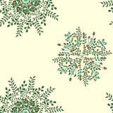 Piękny kółkowy kwiecisty bezszwowy wzór Ornamentacyjny round koronki wzór, wektorowa ilustracja kwiecisty bukiet na a Obrazy Royalty Free