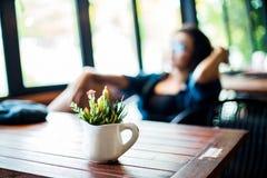 Piękny kaktus na stole drewnianym w cofee obrazy stock
