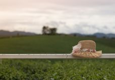 Piękny kapelusz z kwiatem i naturalnym tłem Zdjęcie Stock