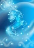 piękny karciany koń shinny ilustracji