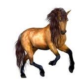 piękny koń ilustracja wektor