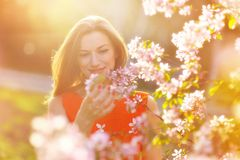 Piękny kobieta w ciąży w kwitnienie ogródzie Fotografia Royalty Free
