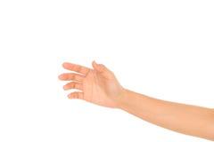 Piękny kobiety ręki mienie odizolowywający na białym tle obraz royalty free